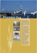Poster Minsener Oog © Mellumrat e.V.