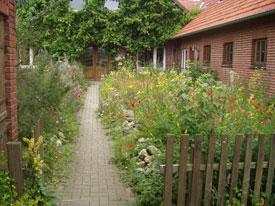Naturgarten an der Naturschutzstation Dümmer