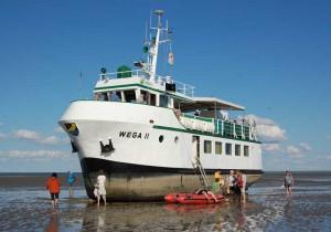 Das Exkursionsschiff WEGA II im Watt vor Mellum