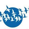Logo Zugvogeltage