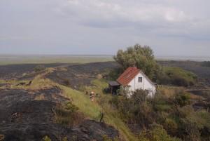 Die Insel nach dem Brand  © Mellumrat e.V.