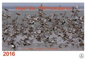 Kalender 2016 Vögel des Wattenmeeres
