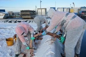 Mitarbeiter beim Freilegen der Knochen © Mellumrat/Clemens