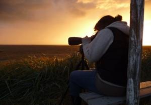 NSW beim Vögel beobachten © Mellumrat/Gnep
