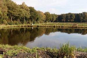 Teichwirtschaft Ahlhorn  © Mellumrat/Behrends