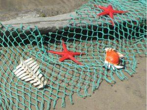 Geisternetze: Netzreste in denen sich Fische, Krabben, Seesterne und die Skelettreste eines Kleinwales verfangen haben. Foto: Thomas Clemens © Mellumrat e.V.