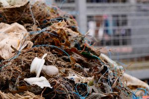 3. Wangerooger Müllsammelaktionstage 02.06.2018, Foto Frederic von Wild