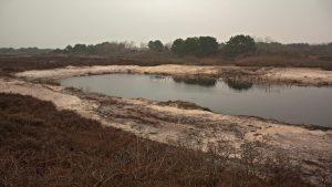 Beispiel eines Ersatzgewässers unmittelbar nach Ausführung der Maßnahme Bildnachweis: N. Hecker/NLPV