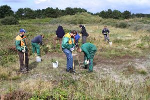 Teilnehmer der Bethelgruppe entfernen Neophyten im Wangerooger Heidegebiet Foto: Benjamin Gnep © Mellumrat e.V.