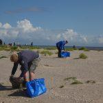 Müllsammler im Einsatz; 60 Freiwillige sammelten 12 Kubikmeter Müll in 3 Stunden. Bildnachweis: Gregor Scheiffarth/Nationalparkverwaltung Nds. Wattenmeer