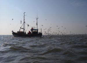 Fischkutter auf See Foto: M.Heckroth