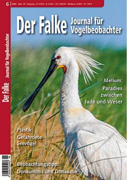 Der Falke – Schwerpunktheft Mellumrat e.V.